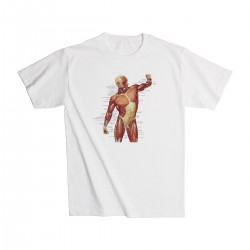 T-Shirt Spieren